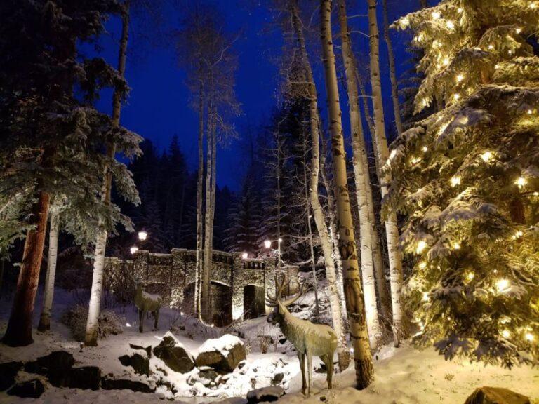 Deer facing towards bridge in forest with lighting