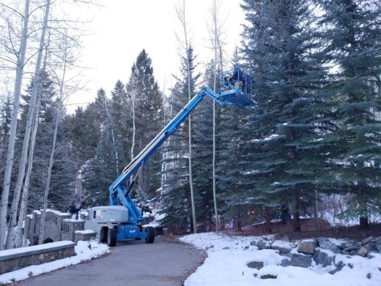 Blue lifting machine hanging lights on a tree