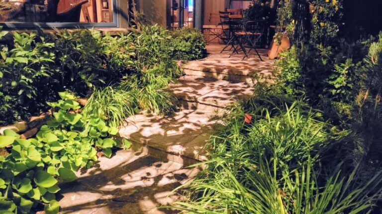 Lighted steps with green plants