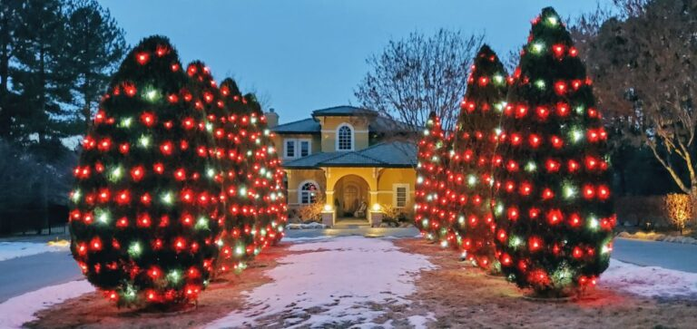 Yellow house with 8 shrubs in front with red and white lights on them