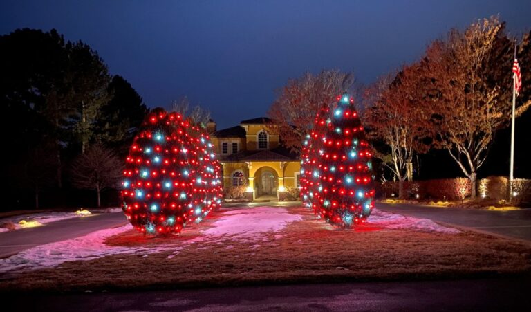 Yellow house with 8 shrubs in front with red and white lights on them 2