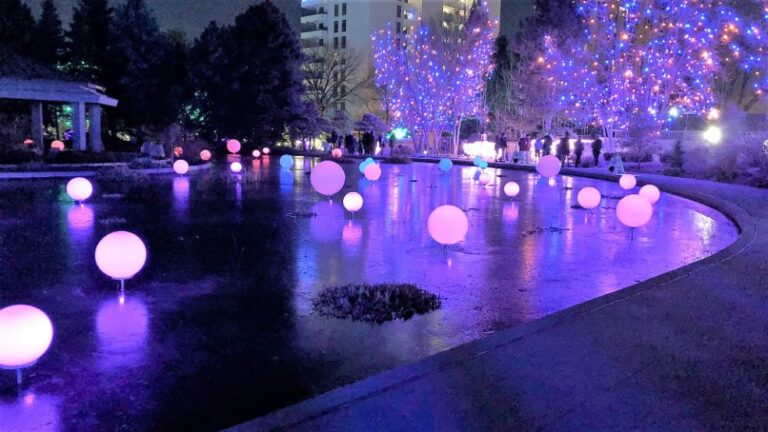 Pink and blue lighted balls
