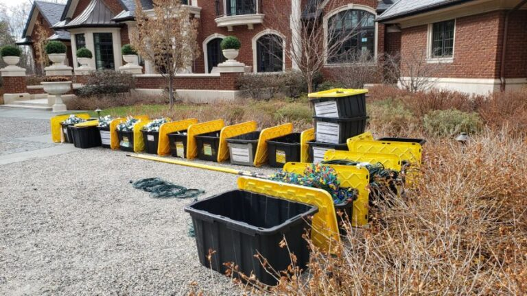 Black and yellow storage totes filled with lights